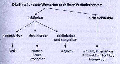 Части речи в немецком языке