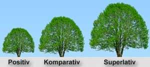 Сравнение прилагательных