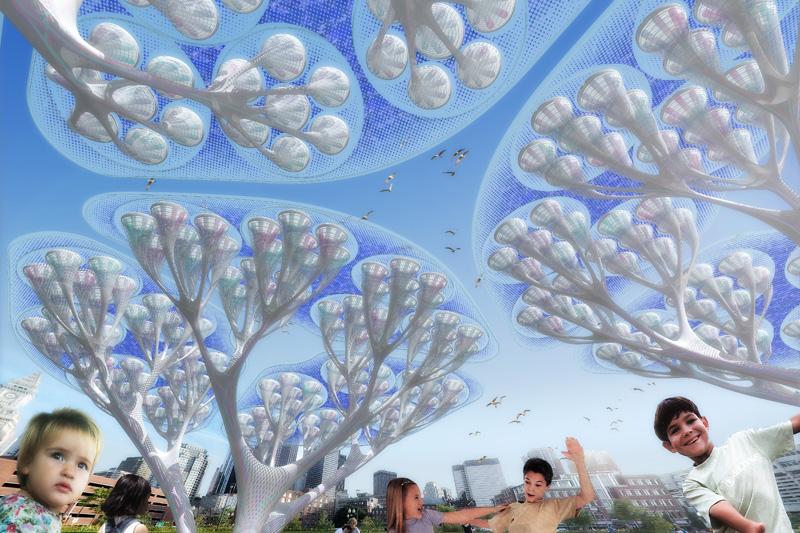 деревья будущего