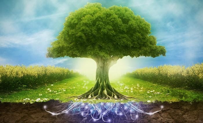 Топик экология