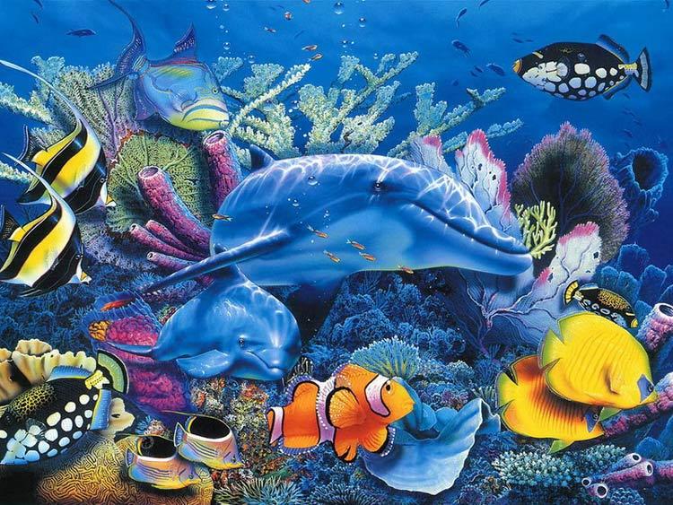 Красота жителей океана