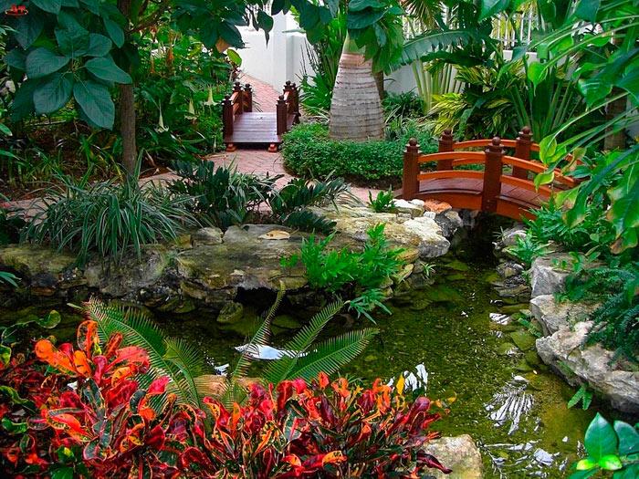Сад в Германии, растения, цветы