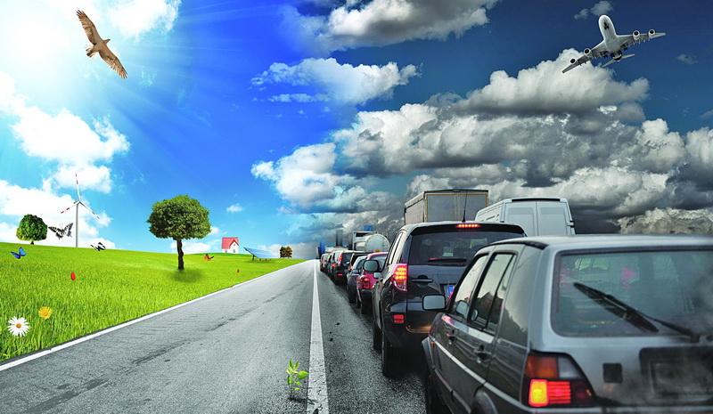 зеленое поле и машины