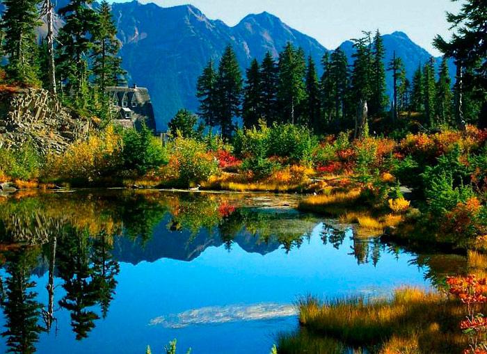 Озера, болота