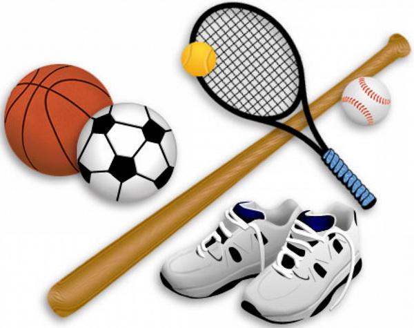 Спорт в германии доклад 240