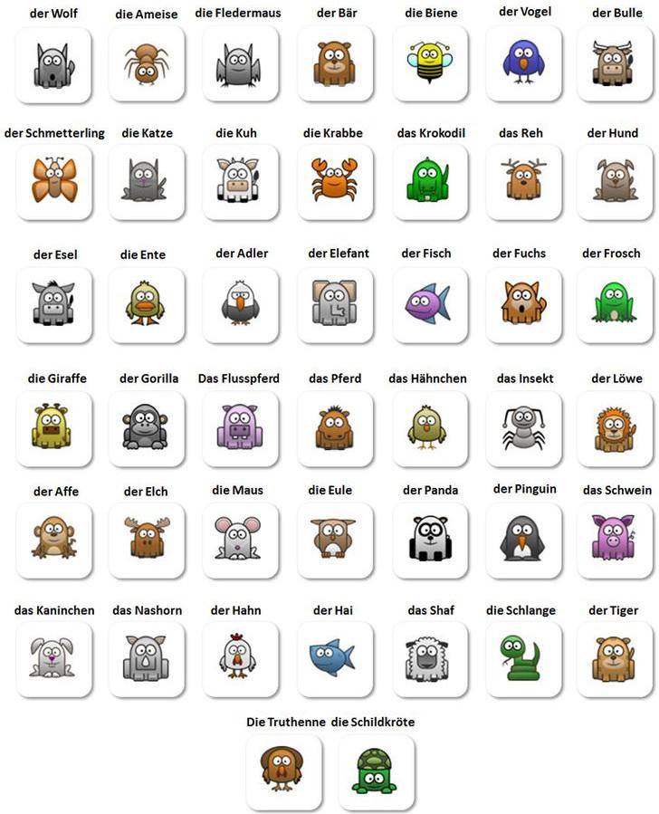Названия популярных животных на немецком  языке